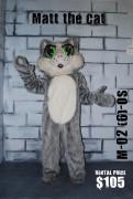 matt-cat